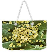Bacteria On Hops Leaf, Sem Weekender Tote Bag