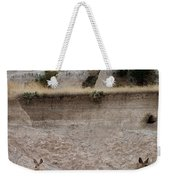 Badlands Deer Sd Weekender Tote Bag
