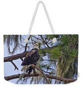 Bald Eagle By H H Photography Of Florida Weekender Tote Bag