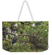 Bald Eagle In A Pine Tree, No. 4 Weekender Tote Bag