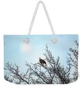 Bald Eagle In A Tree Enjoying The Sunlight Weekender Tote Bag