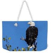 Bald Eagle In The Tree Weekender Tote Bag