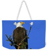 Bald Eagle On Blue Weekender Tote Bag