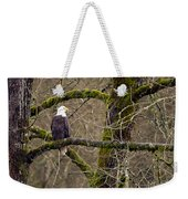 Bald Eagle On Mossy Branch Weekender Tote Bag