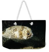 Balloonfish Profile Puffer Fish, Diodon Weekender Tote Bag
