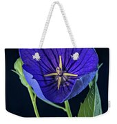 Baloon Flower In Early Morning Weekender Tote Bag