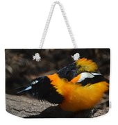 Baltimore  Oriole 2 Weekender Tote Bag