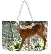 Bambi1 Weekender Tote Bag