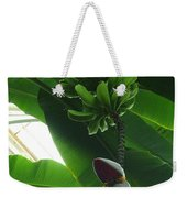 Banana Plant Kew London England Weekender Tote Bag