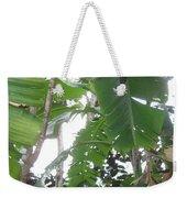 Banana Tree Weekender Tote Bag