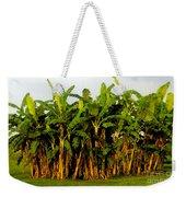 Banana Trees Weekender Tote Bag