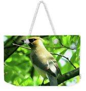Bandit Bird Weekender Tote Bag