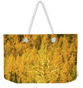 Banff Golden Larch Dream World Weekender Tote Bag