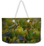 Bank Of Succulents Weekender Tote Bag