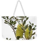 Banksia Syd02 Weekender Tote Bag