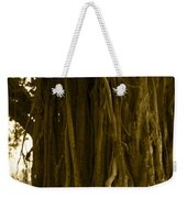 Banyan Surfer - Triptych  Part 1 Of 3 Weekender Tote Bag