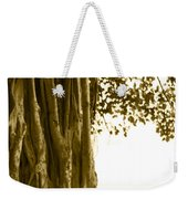 Banyan Surfer - Triptych  Part 2 Of 3 Weekender Tote Bag