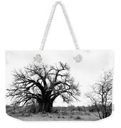 Baobab Landscape Weekender Tote Bag