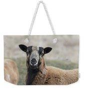 Barbados Blackbelly Sheep Portrait Weekender Tote Bag