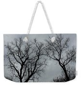 Bare, Raw, Cold Winter Day  Weekender Tote Bag