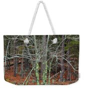 Bare Tree And Boulders In Mark Twain Forest Weekender Tote Bag