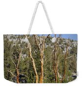 Bare Trees Weekender Tote Bag