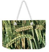Barley, Green Stage Weekender Tote Bag