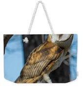 Barn Owl Framed In Cottonwood Weekender Tote Bag