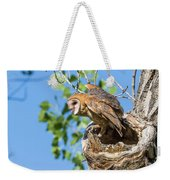 Barn Owl Owlet Climbs Out Of Nest Weekender Tote Bag