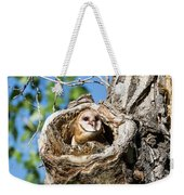 Barn Owl Owlet Says Hello To The World Weekender Tote Bag