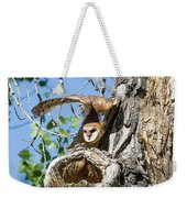 Barn Owl Owlet Stretches High Weekender Tote Bag