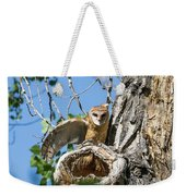 Barn Owl Owlet Stretches Weekender Tote Bag