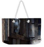 Barn Owl......i See You. Weekender Tote Bag