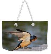 Barn Swallow Weekender Tote Bag by Byron Varvarigos