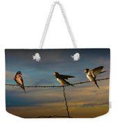 Barn Swallows On Barbwire Fence Weekender Tote Bag