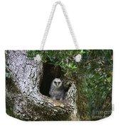 Barred Owlet Weekender Tote Bag