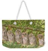 Barred Owlets Nursery Weekender Tote Bag