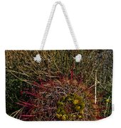 Barrel Cactus Top View Weekender Tote Bag