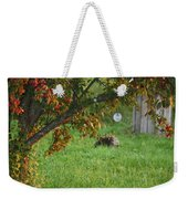 Barton Backyard Weekender Tote Bag