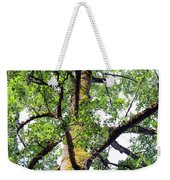 Basking In The Light Of The Lord Weekender Tote Bag