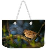 Basking In The Morning Light Weekender Tote Bag