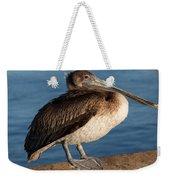 Basking Pelican Weekender Tote Bag