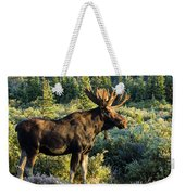Basking In The Morning Sun Weekender Tote Bag