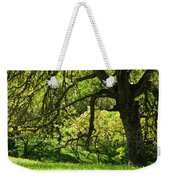 Bathed In Spring Weekender Tote Bag