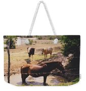 Bathing Horse Weekender Tote Bag