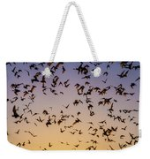 Bats At Bracken Cave Weekender Tote Bag