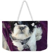 Baxter Boo Goes To The Beach Weekender Tote Bag