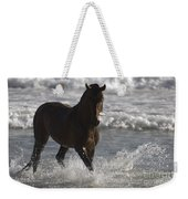 Bay Andalusian Stallion In The Surf Weekender Tote Bag