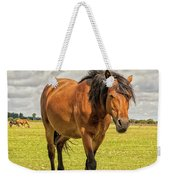 Bay Pony Weekender Tote Bag