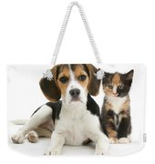 Beagle And Calico Cat Weekender Tote Bag